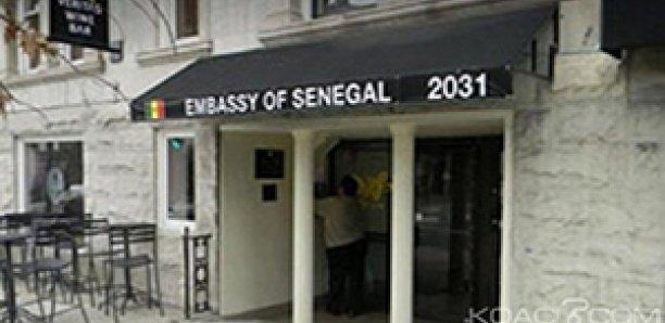 États-Unis : Un «détraqué» menace de tuer Trump et de faire exploser l'ambassade du Sénégal