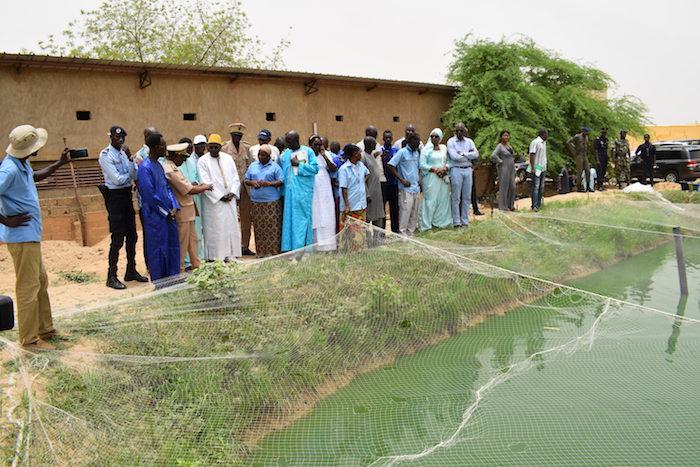 Aquaculture : Le gouvernement compte porter à 50.000 tonnes la production aquacole du Sénégal en 2023