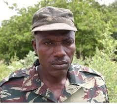 Forestiers disparus en Casamance : Ils seraient vivants et détenus par César Atoute Badiate