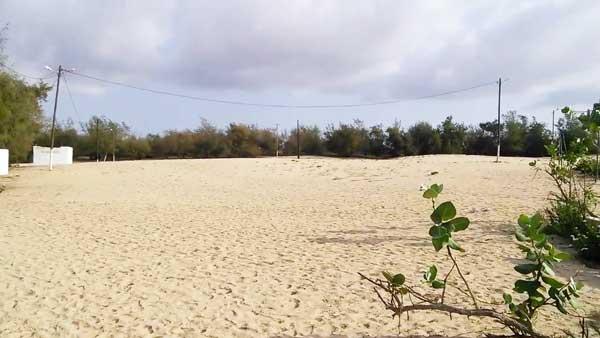 Site de Nguédiaga à Malika : la communauté layène demande 55 ha supplémentaires à Macky Sall
