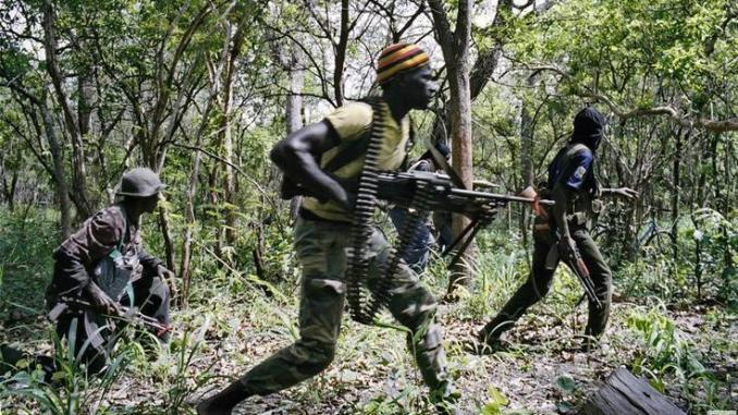 Casamance / Braquage sur la RN4 : Des hommes armés tirent sur des véhicules et blessent des passagers