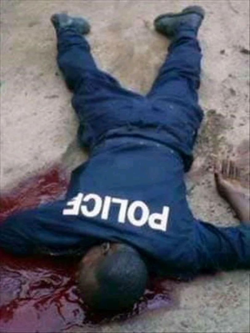 LA GUINÉE SOUS HAUTE TENSION / Silence coupable des États de la sous-région... Le Sénégal vers une déstabilisation démographique... Dalein Diallo en danger !
