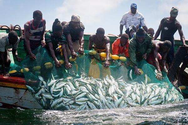 Le secteur de la pêche et de l'aquaculture menacé de perturbations