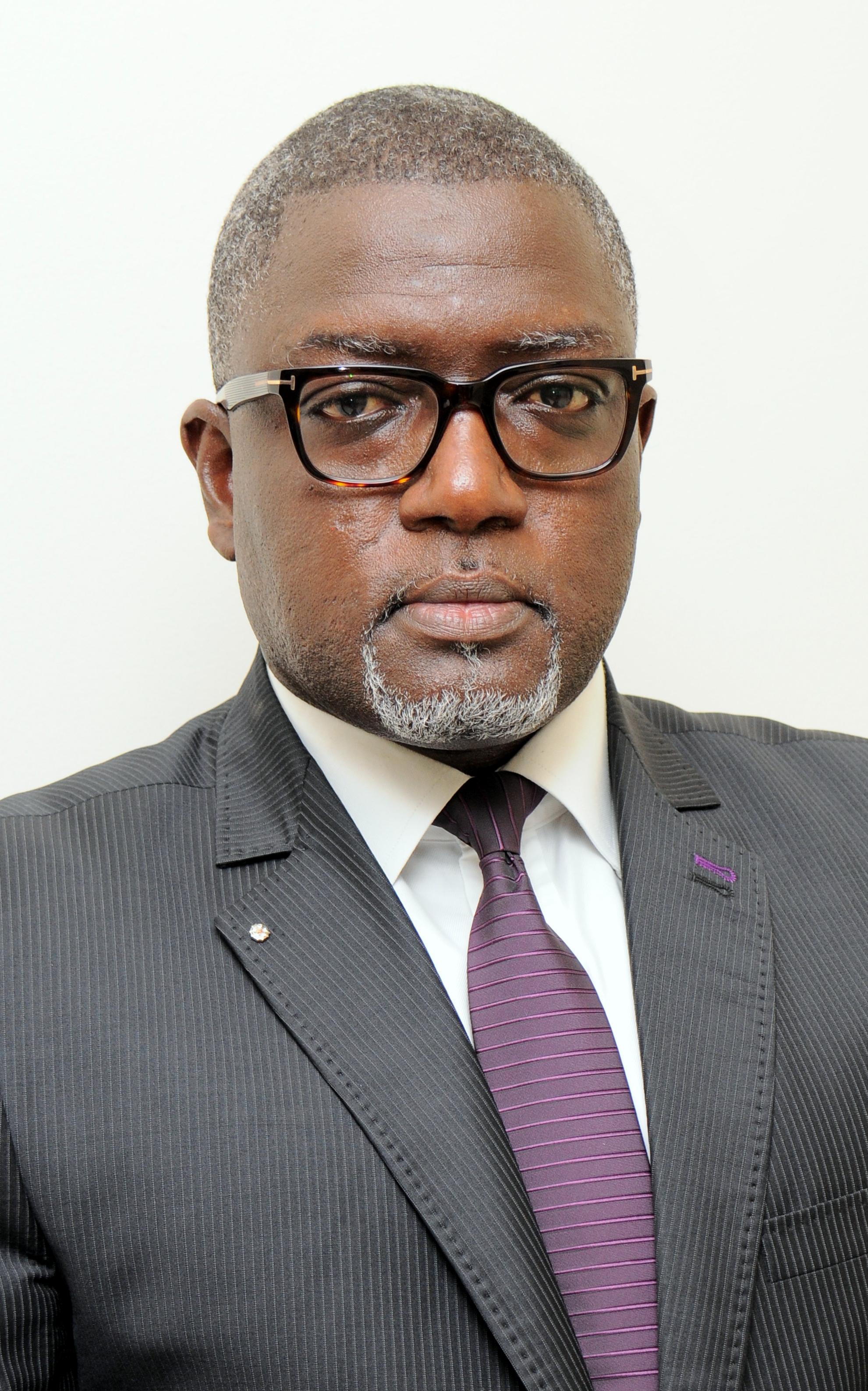 Nouveau DG du FONSIS : Le profil de Pape Demba Diallo