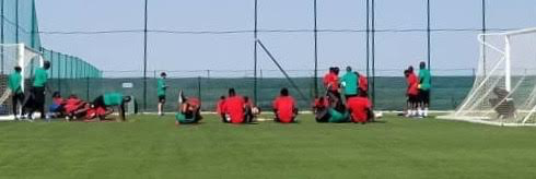 Alicante (Espagne) : Deux galops d'entraînement intenses pour les Lions ce dimanche, des séances vidéo en perspective