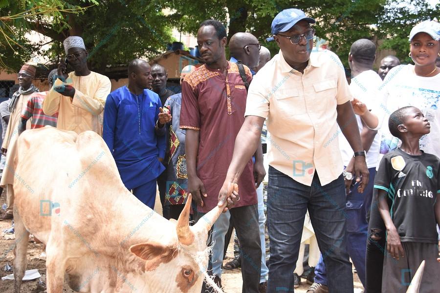 Tamkharite-Biscuiterie : Le Ministre ACND offre 21 bœufs aux populations ( IMAGES )