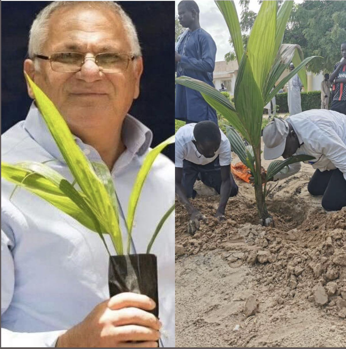 Environnement :  Pour Reverdir le Sénégal, Macky mise sur un duo d'écologistes engagés.