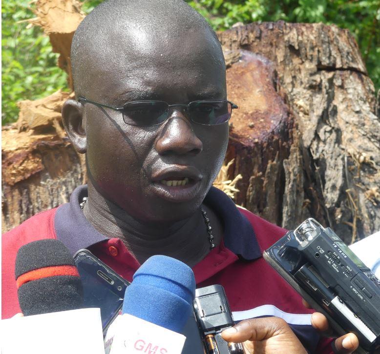 Dr René Massiga Diouf, président African Journalist forum : «Le visage de la Casamance a complètement changé»