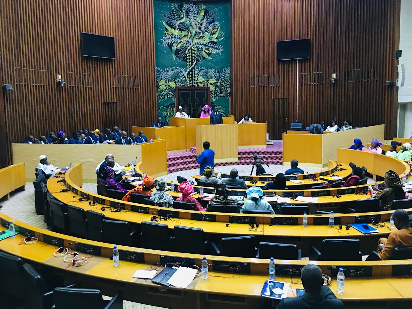 Assemblée nationale : Le député Mamadou Oury Baillo Diallo plaide pour la construction du tribunal départemental de Vélingara.