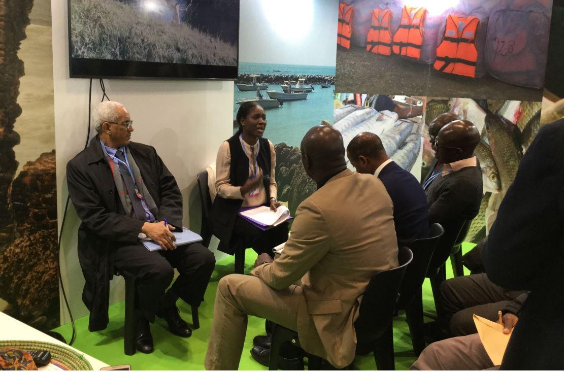 Négociations COP 25 – L'accompagnement de l'Ambassade en Espagne espéré par la délégation sénégalaise
