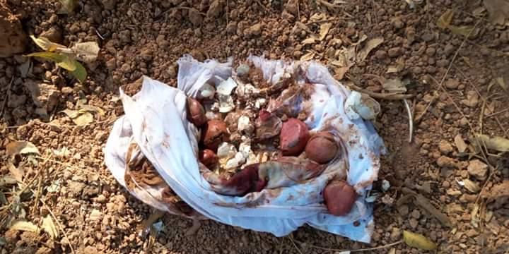 KÉDOUGOU : La tombe d'un notable profanée, fait jaser.