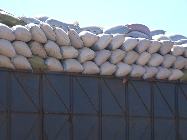 Commercialisation de l'arachide / Sonacos Kaolack : 06 camions réceptionnés depuis le début de la campagne (Images)