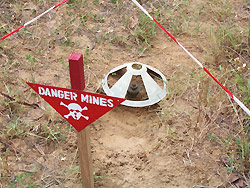 Casamance : Un homme saute sur une mine dans le nord Sindian