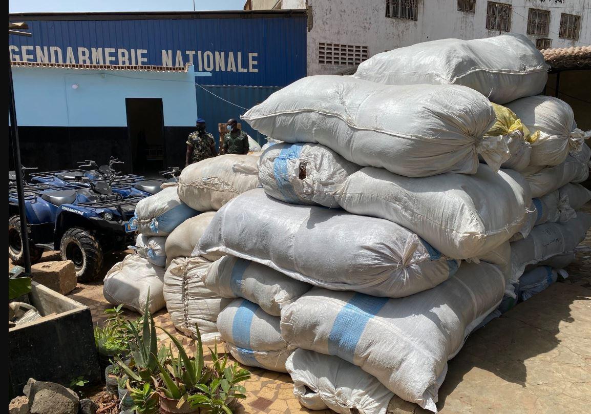 Thiaroye : 15 tonnes de tabac d'une valeur de 67.500.000 FCFA saisie par la Gendarmerie de l'environnement