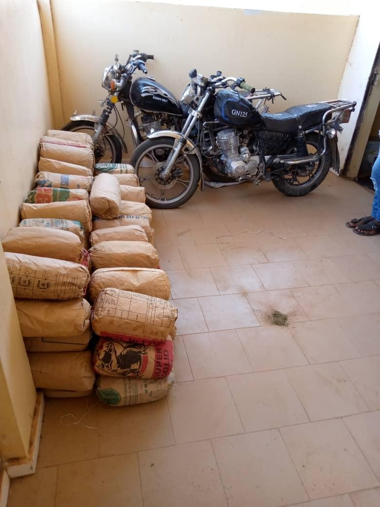 LUTTE CONTRE LE TRAFIC DE DROGUE : La Police saisit 94 kilogrammes de chanvre indien à Sédhiou et à Tambacounda.