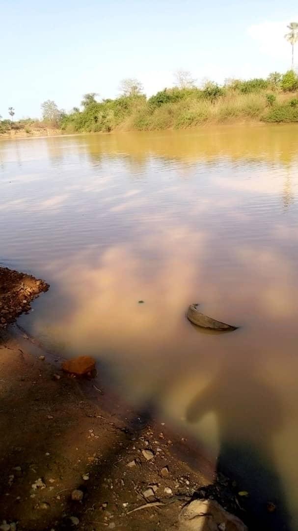 INCURSION À SARAYA / À la découverte d'un village à la frontière Sénégalo-Malienne : BOURÉYA.