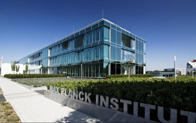 Allemagne : L'artémisia agit contre la Covid-19, selon l'Institut Max Planck.
