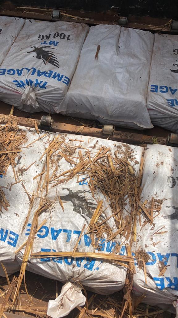 LUTTE CONTRE LA CRIMINALITE TRANSFRONTALIERE ORGANISEE : Saisie record de 1076 kg de chanvre indien effectuée par la Douane de Koumpentoum.