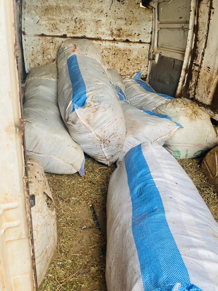 Démantèlement des réseaux et couloirs de trafic de stupéfiants : La Douane déniche 335 kg de chanvre indien dans un dépôt de paille d'arachide à Kounoune.