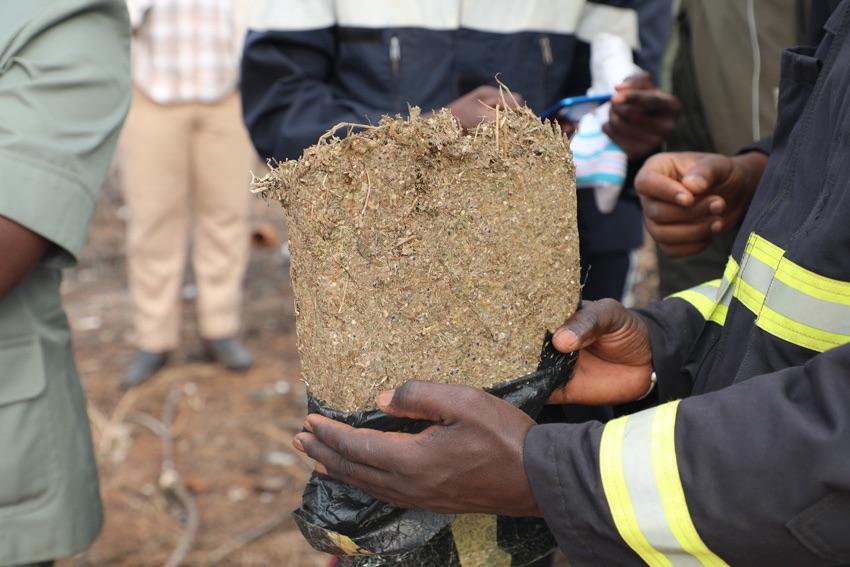 Sédhiou : La brigade de gendarmerie a saisi 20kg de chanvre indien.