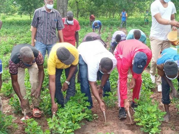 KOLDA / Travaux champêtres : Le ministre Moussa Baldé indique la direction.