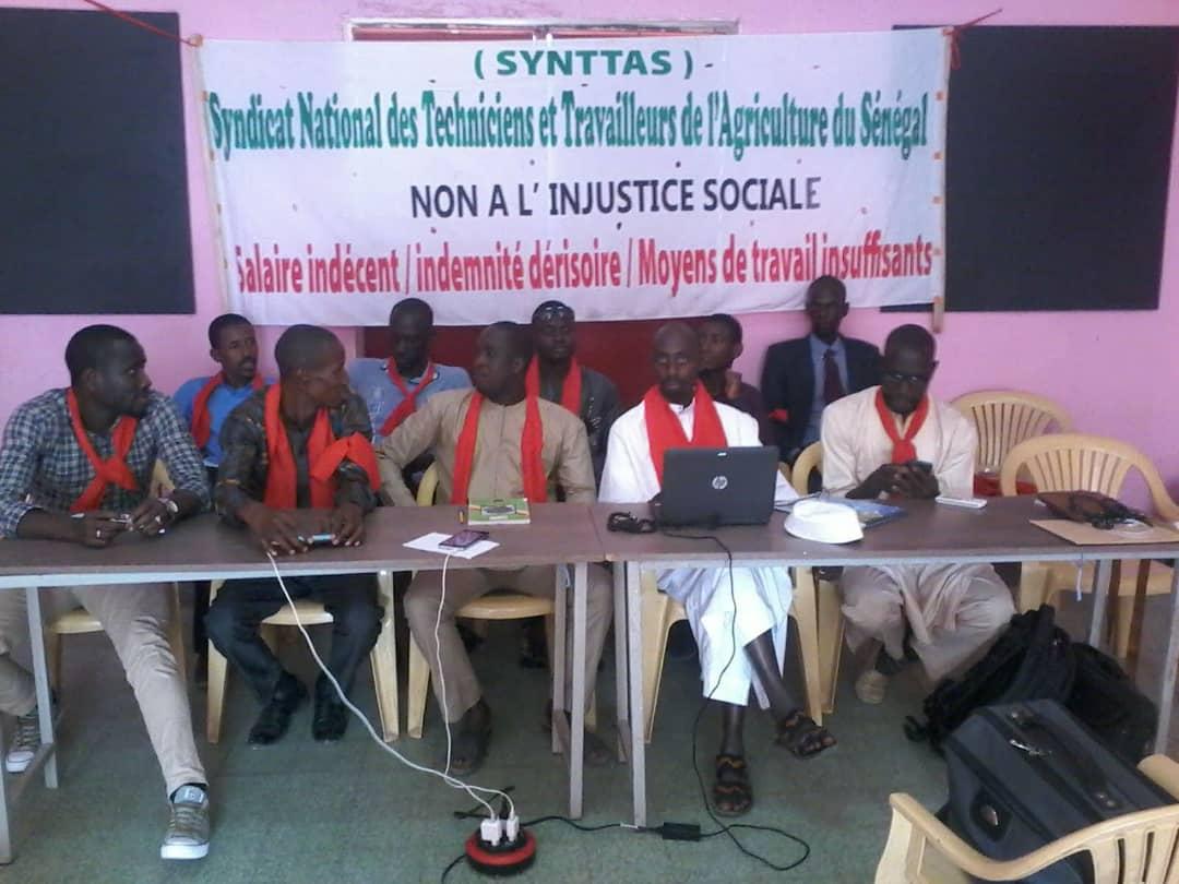 Kaolack : Le syndicat national des techniciens et travailleurs de l'agriculture en grève du 17 au 19 août 2020.