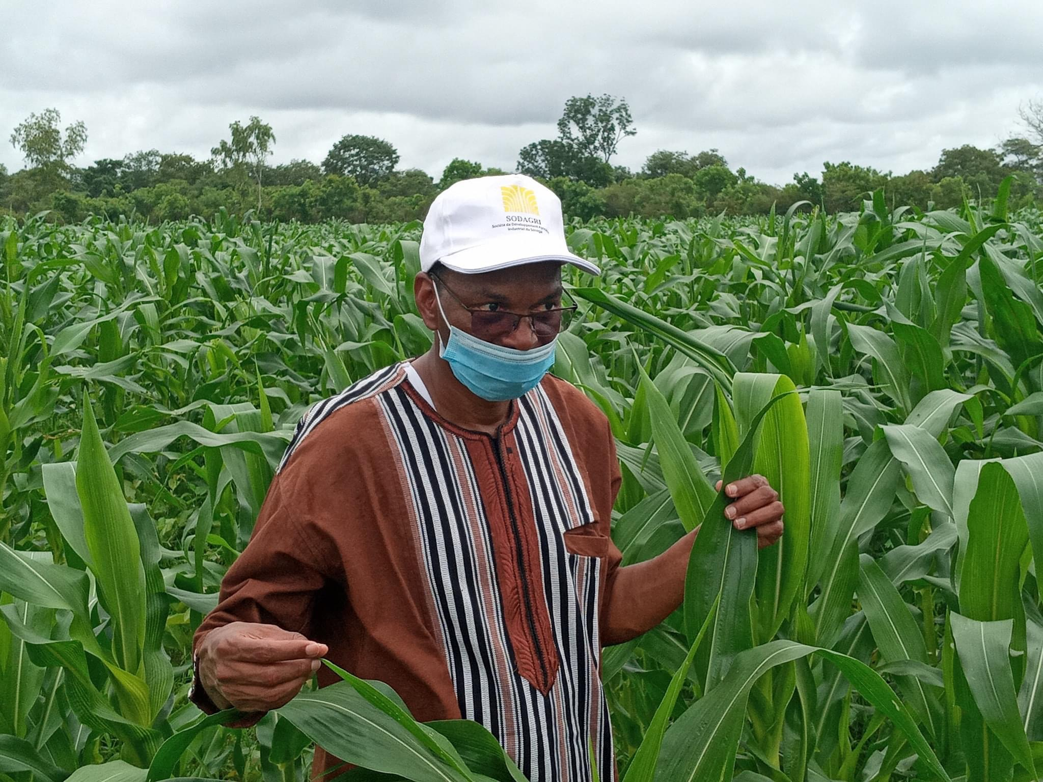 Moussa Baldé (MAER) : «Nous pensons que Nioro pourrait être non seulement autosuffisant en céréales, mais aussi fournir les autres régions du Sénégal»