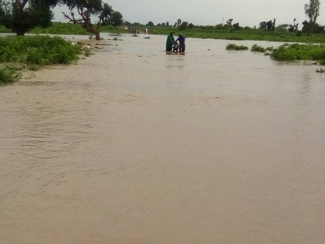 Kaffrine-Mabo : Les eaux pluviales engloutissent l'axe routier... Un homme échappe à la mort en montant sur un arbre... Ses deux ânes emportés (Images).