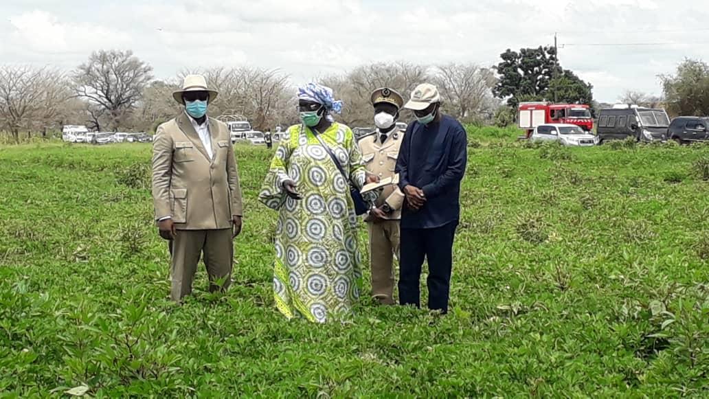 Sibassor / Tournée agricole : Le président de la République félicite les groupements de femmes.