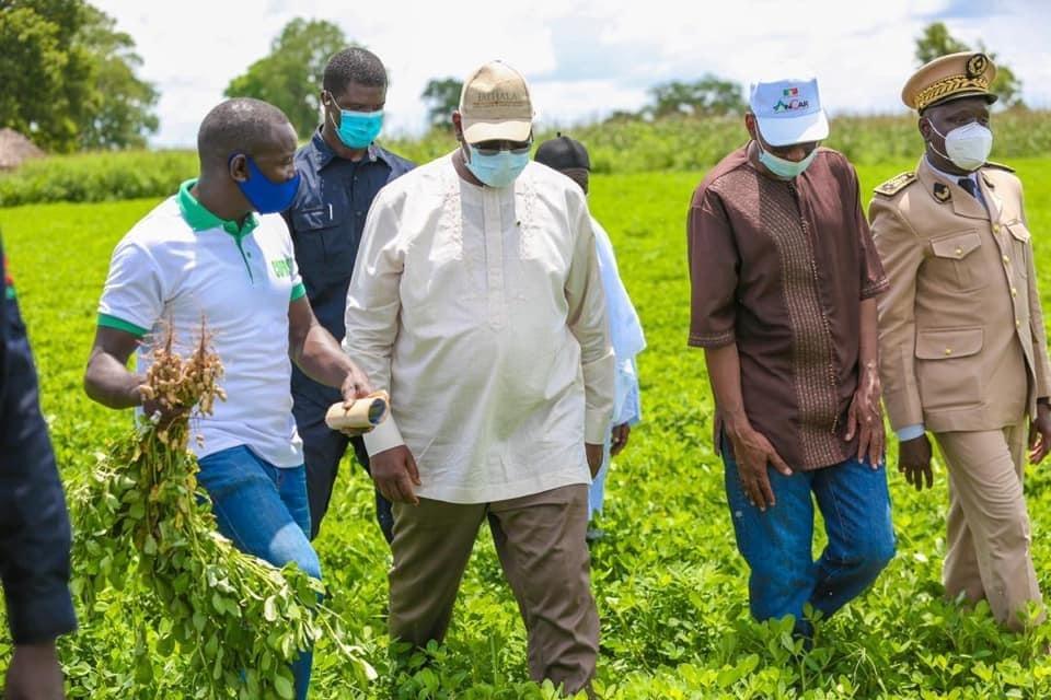 Nioro / Macky Sall : «Si on arrivait à organiser tous nos producteurs en coopératives, l'acquisition du matériel serait plus facile»
