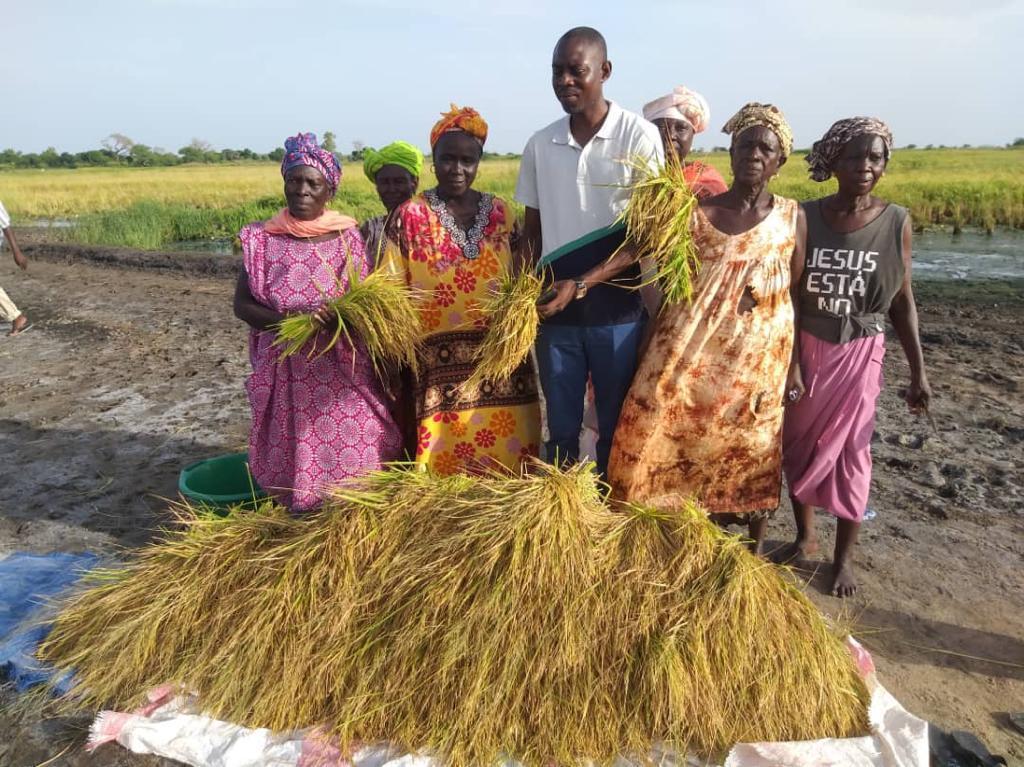 Fatick : Mamadou Ngom NIANG donne suite à l'appel du président Macky pour un retour vers l'agriculture