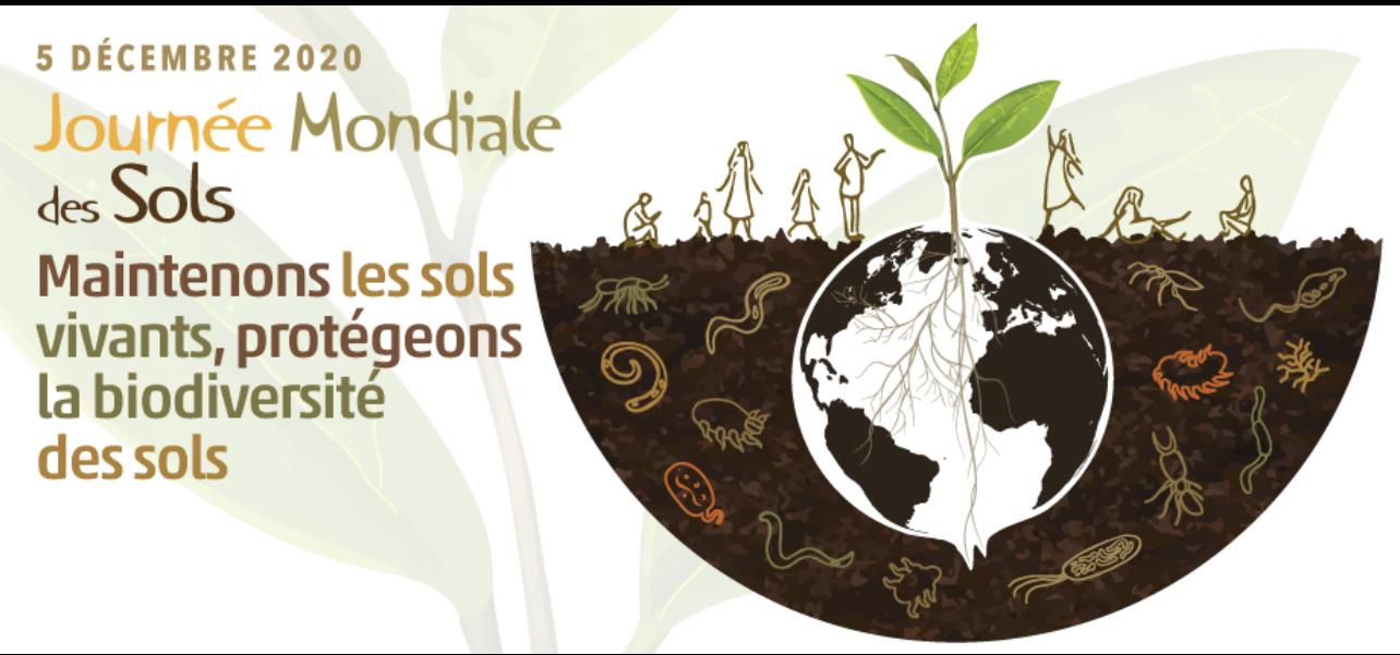 Analyses rapides et efficientes des sols : Le Sénégal en phase d'être un des pionniers en Afrique.