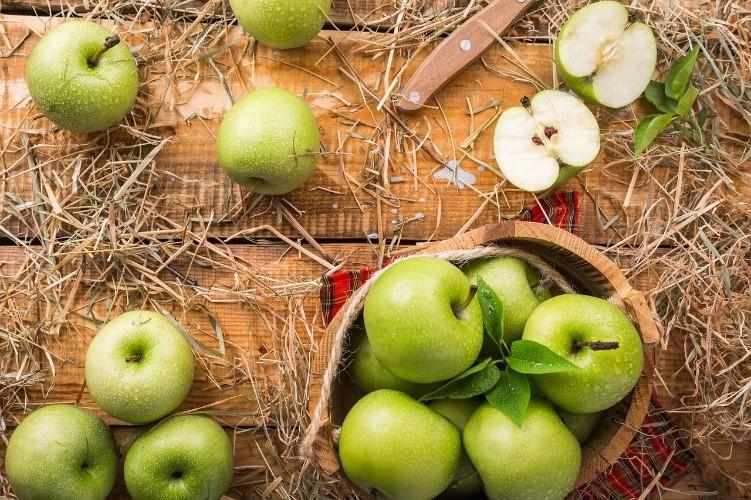 288 tonnes/an de pommes exportées au Sénégal :  un Festival des Pommes à Dakar pour inciter les producteurs à s'inspirer de l'expérience Polonaise