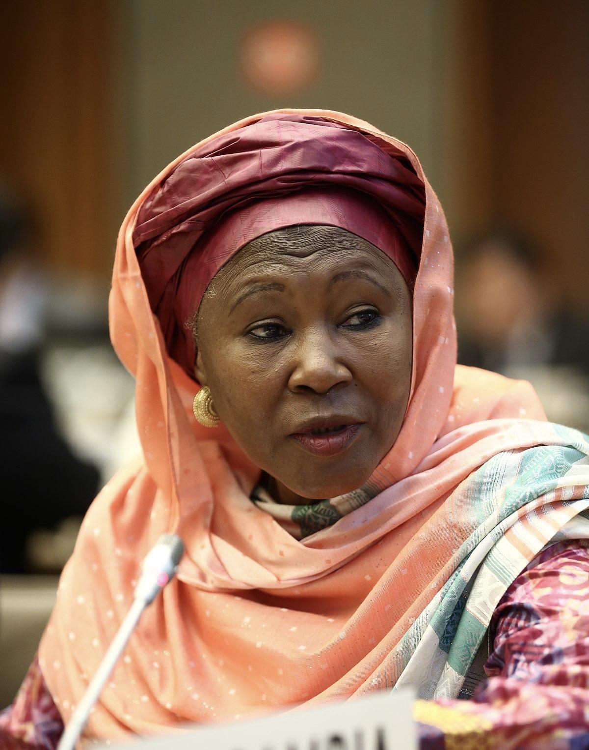 Commission de l'Union Africaine : L'ancienne vice-présidente de la Gambie, Fatoumata Tambajang, candidate au poste de vice-présidente.
