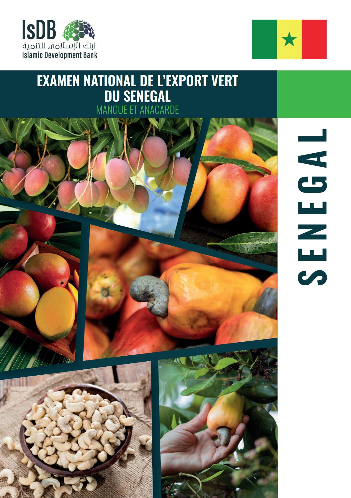 Commercialisation de l'anacarde et de la mangue : L'Enev propose une industrialisation des filières dans son rapport remis à l'État du Sénégal