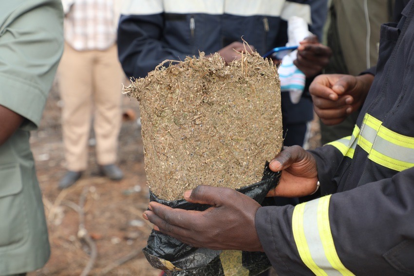 Trafic : 5 kilos de chanvre saisis à la plage de Yarakh.