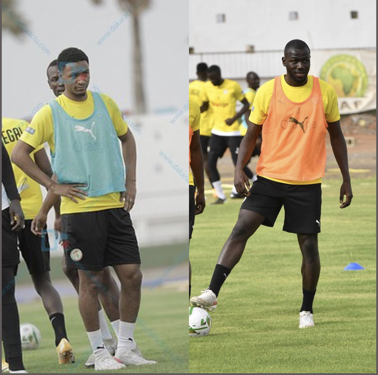 Défense des Lions : Kalidou Koulibaly - Abdou Diallo, un binôme de rêve dans l'axe central