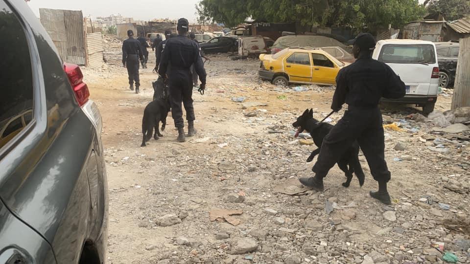 Mermoz et Ouakam : Plus de 800 personnes interpellées et des armes blanches saisies lors d'une perquisition dans des quartiers chauds