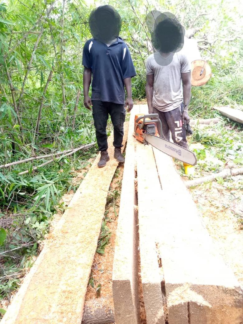 Goudomp : L'armée a arrêté deux coupeurs de bois entre Salamoun Hiya et Médina Peulh.