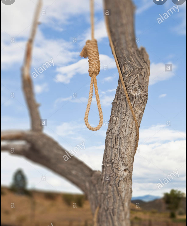 Suicide à Ziguinchor : Après Malang Mané à Kantène, Diéré Sagna retrouvé pendu à un arbre entre Kagnarou et Sindian.
