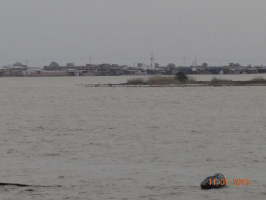 Cas de noyade au Waladekh : Deux jeunes meurent dans le bras de mer de Kaolack... Leurs corps toujours introuvables.