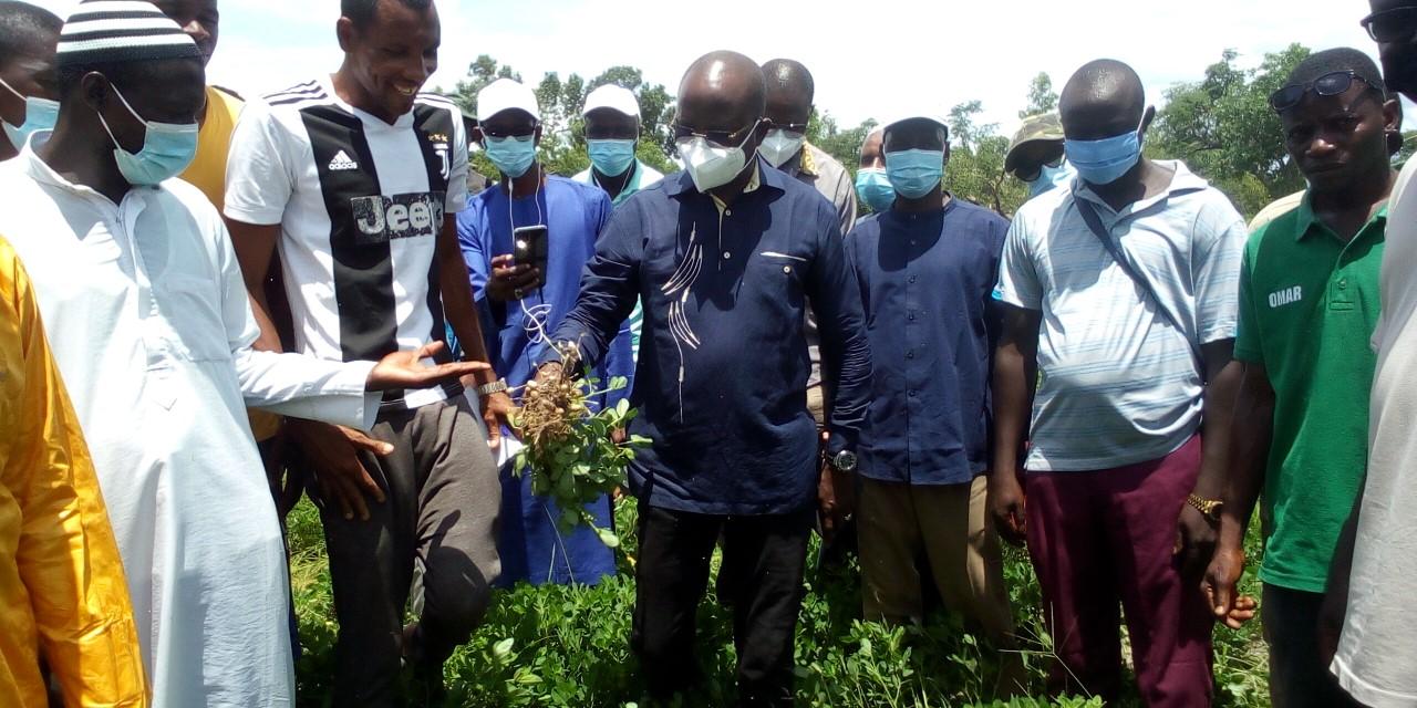 Phase test de la Sonacos à Kolda : « …Plus de 350 producteurs, près de 250 hectares emblavés plus de 53 tonnes de semences distribuées… » (Modou Diagne Fada, DG Sonacos)