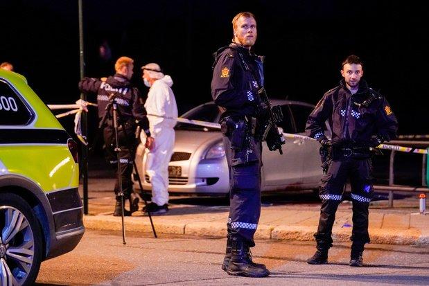 Norvège : Un homme armé d'un arc tue et blesse plusieurs personnes.
