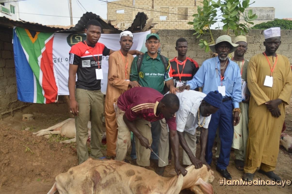 Tabaski à Médina Baye : Cheikh Mahy Cissé a distribué 631 têtes de bétail
