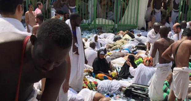 Recherche des pèlerins disparus : Les étudiants sénégalais basés à Jeddah ont bien joué leur partition
