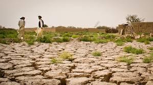 Neutralité de la dégradation des terres : Point chaud des négociations de la Cop 12 sur la désertification.