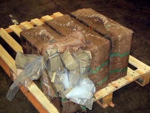 Saisie de médicaments : La Douane intercepte de la drogue d'une valeur de 2,3 milliards
