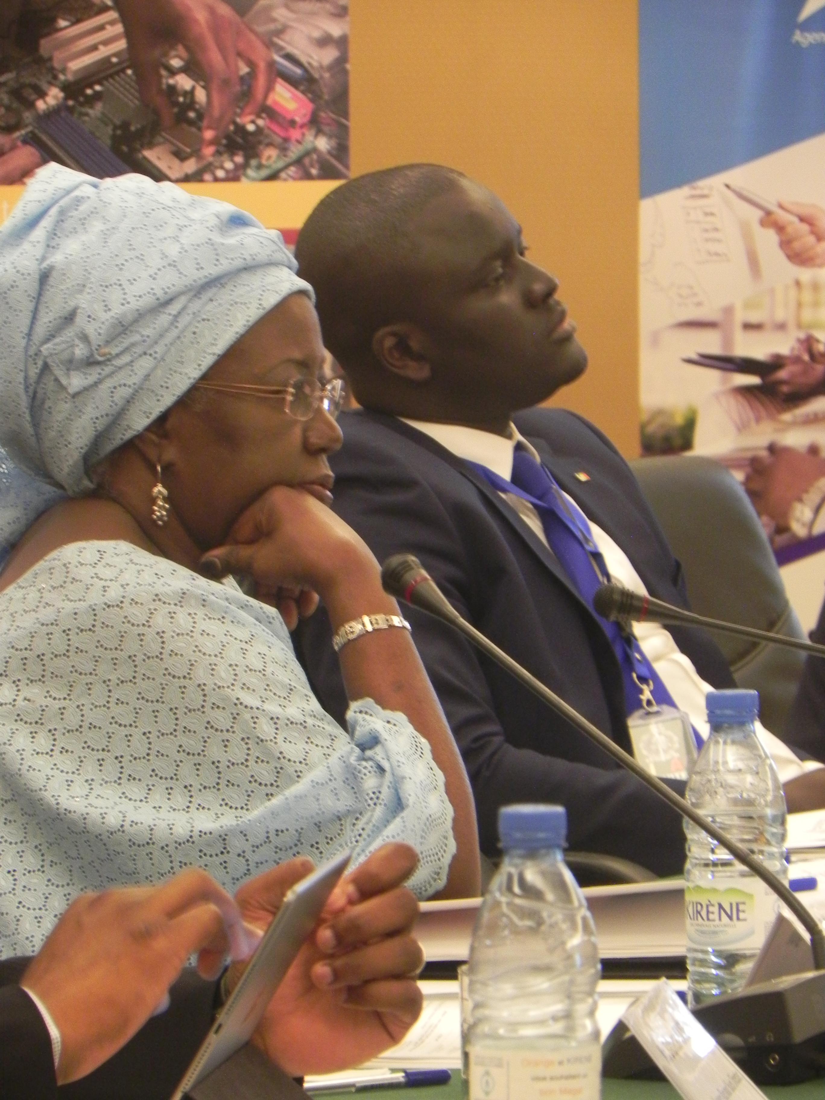 Développement des TIC : Le DG de l'ADIE plaide pour plus de partenariat avec le privé