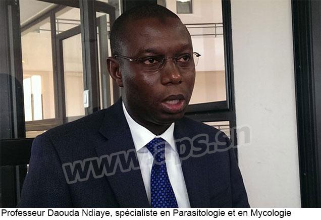 Le paludisme peut être éliminé au Sénégal d'ici 5 ans (CHERCHEUR)