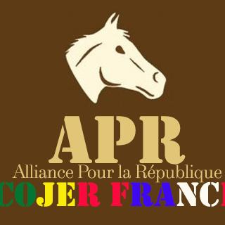 Référendum du 20 mars : La COJER / France appelle à voter massivement OUI au référendum et invite les partis politiques à prendre de la hauteur.